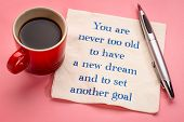 You are never too old to have a new dream and to set another goal - handwriting on a napkin with a c poster