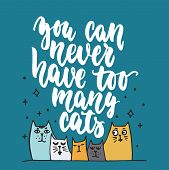 You Can Never Have Too Many Cats - Hand Drawn Lettering Phrase For Animal Lovers On The Dark Blue Ba poster