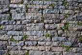 pic of porphyry  - stone street background - JPG