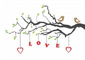 Two love birds and love tree