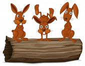 picture of hollow log  - Illustraiton of rabbits on a log - JPG