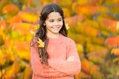 The Mellow Autumn Mood. Happy Small Child In Good Mood Outdoors. Little Child Play On Fresh Air On A poster