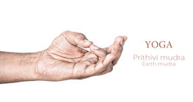 image of samadhi  - Hand in Prithivi mudra by Indian man isolated at white background - JPG