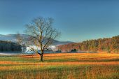 picture of cade  - valley in Cades Cove Tennessee with blue sky - JPG
