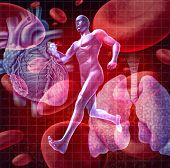 stock photo of cardiovascular  - Cardiovascular system as a health care and medical concept with a human heart and lungs on red blood cells and an athlete runner as a physical fitness symbol for a healthy lifestyle - JPG