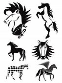 foto of iroquois  - silhouettes of horses on a white background - JPG