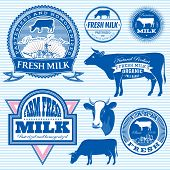 picture of homogeneous  - set of vector icons on the theme of cow - JPG