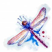 Purple Watercolor Dragonfly
