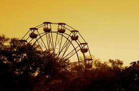 pic of ferris-wheel  - Florida State Fair Sunset Ferris Wheel Trees Horizon Skyline - JPG