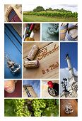 pic of bordeaux  - Collage of views and wineries at Bordeaux - JPG