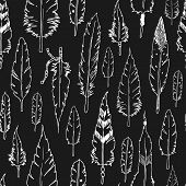 pic of feathers  - Vector feather background - JPG