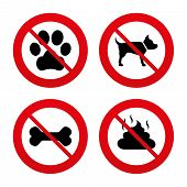 ������, ������: Pets icons Dog paw and feces signs