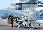 image of carriage horse  - Horse carriages in front of cruise liners - JPG