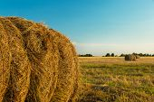 stock photo of hay bale  - Hay bale in the countryside - JPG