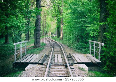 Railroad Bridge In The Summer