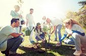volunteering, charity, people and ecology concept - group of happy volunteers planting tree and digg poster