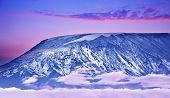 stock photo of kilimanjaro  - Kilimanjaro at sunset giant volcano mount mountain covered with snow beautiful landscape Amboseli national park Kenya Africa - JPG