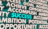 Success Achievement Opportunity Succeed Word Collage 3d Illustration poster