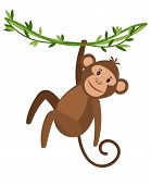 Funny Cartoon Monkey Icon On White Background. Cute Monkey Hanging On A Creeper, Vector Illustration poster