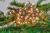 Bokeh Christmas Tree Indoors Fairy Lights Ball Illuminating. A Series Of Low Voltage String Festive  poster