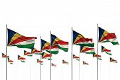 Pretty Anthem Day Flag 3d Illustration  - Seychelles Isolated Flags Placed In Row With Soft Focus An poster