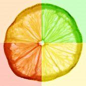 picture of tangelo  - Slice of citrus fruit - JPG