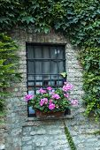 Window With Flower. Window With Iron Grille And Flowers. Window Decorated With Geranium Flowers. poster