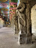 picture of meenakshi  - The Sri Meenakshi Sundareswarar Temple is a historic Hindu temple in the temple city of Madurai - JPG