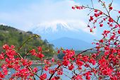 pic of mount fuji  - Japan landscape with Mount Fuji in backgrond - JPG