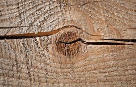 picture of uncolored  - Closeup texture of uncolored old knotted wooden lining board - JPG