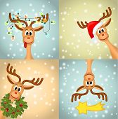 picture of caribou  - four funny reindeer - JPG