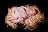 picture of manger  - Baby Jesus sleeping in the manger - JPG