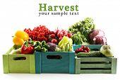 stock photo of abundance  - Fresh organic vegetables in wooden boxes - JPG