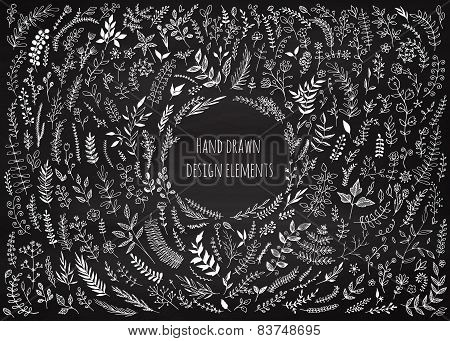 Set Of Floral Elements On The Chalkboard