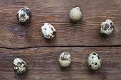 pic of laying eggs  - seven quail eggs lay on vintage wooden surface - JPG