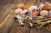 pic of manger  - Speckled quail eggs and chicken eggs in the manger on a rustic background - JPG