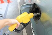 image of petrol  - fueling the petrol at the Petrol station - JPG