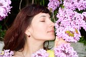 picture of judas tree  - beautiful young woman sniffs redbud flowers fragrance - JPG