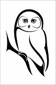 picture of owls  - Vector illustration  - JPG