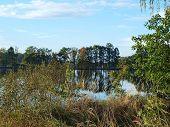 picture of bohemia  - view landscape ponds South Bohemia Czech Republic - JPG