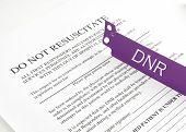 stock photo of resuscitation  - Do not resuscitate purple bracelet on top of a hospital medical form - JPG