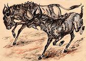 stock photo of wildebeest  - graphic animal illustration running wildebeest in savanna - JPG