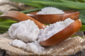 picture of salt-bowl  - salt bath in wooden bowl with bamboo leaves in background - JPG