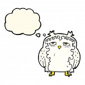 foto of wise  - cartoon wise old owl with thought bubble - JPG