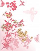 picture of cherry-blossom  - illustration with cherry tree flowers and butterflies silhouette on white background - JPG