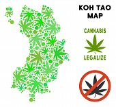 Royalty Free Cannabis Koh Tao Thai Island Map Collage Of Weed Leaves. Template For Narcotic Addictio poster