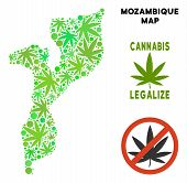 Royalty Free Cannabis Mozambique Map Composition Of Weed Leaves. Concept For Narcotic Addiction Camp poster