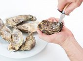 Fresh oyster. Man open fresh oyster. Raw fresh oyster is on white round plate, image isolated, with  poster