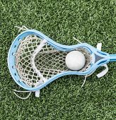 A Lacrosse Stick With A Ball In It Laying On The Turf. poster