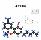 Cannabinol. Structura Of A Cbn Molecule. Chemical Formula And Model Of The Molecule. Vector Illustra poster